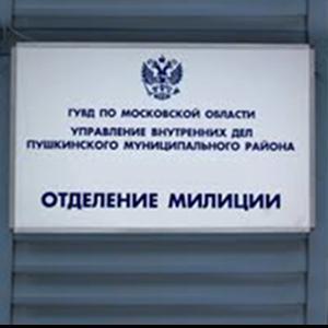 Отделения полиции Идели